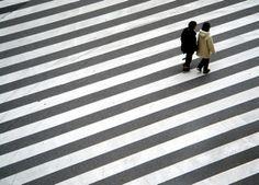 cross walk-black and white-lines-grid-stripes-zebra