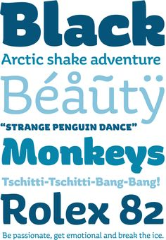 Aniuk is a new original display type family designed and optimized for the use in large sizes. With five robust weights – Regular, Medium, Bold, Heavy and Black – it is perfectly suited for editorial, posters or logo design. A perfect balance of characteristic curves and edgy details make this a strong but playful typeface; a solid partner for your creative adventures.