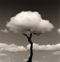 Black and White Art Photography . chema madoz has a unique perspective for black and white photography Fotografia Fine Art, Clouds Pattern, Photocollage, Jolie Photo, White Art, Black White Photos, Black Art, Optical Illusions, Black And White Photography