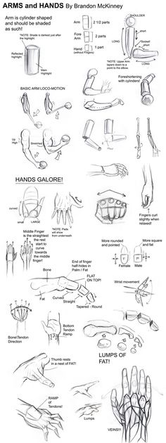 Draw... arms and hands tutorial by Brandon McKinney by christy1