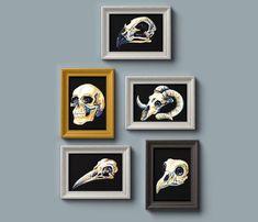 Animal Skull Art Print Set/Wall Decor/Wall Hanging/Set of Five/Watercolour Print Skull Print, Art Print, Gold Ink, Animal Skulls, Hand Illustration, Watercolor Print, Poster Prints, Gallery Wall, Just For You