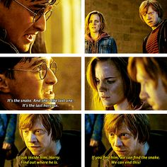 Harry knows Nagini isn't the last one Ron And Hermione, Harry Potter Hermione, Ginny Weasley, Harry Potter Love, Harry Potter Universal, Harry Potter World, Harry Potter Friends, Harry Potter Films, Hp Movies