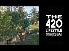 The 420 Lifestyle Show: Ladies Night!