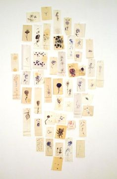 Jim Hodges, A Diary of Flowers (every moment picture your heart), Harvard Art Museums/Fogg Museum. Harvard Art Museum, Political Art, Museum Collection, Conceptual Art, Your Heart, Contemporary Art, Photo Wall, Arts And Crafts, Collections