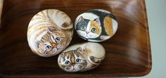 Hand-decorated pebbles - fun creative activity for kids and grown-ups - Fashion And Hairstyle Pebble Painting, Stencil Painting, Realistic Drawings, Easy Drawings, Decorative Pebbles, Small Kittens, Creative Activities For Kids, White Acrylic Paint, Little Elephant