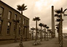 Azucarera Larios, Torre del Mar