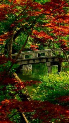 Famous Gardens of the World, Japanese Garden, Kyoto,Japan  #japanesegardening