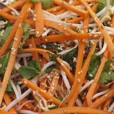 Learn to make bean sprout carrot and sesame salad and hundreds of other recipes featuring cabbage and other organic vegetables and fruit. Bean Sprout Salad, Bean Sprout Recipes, Sprouts Salad, Bean Recipes, Salad Recipes, Vegetarian Recipes, Healthy Recipes, Weeknight Recipes, Healthy Salads
