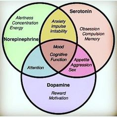 Here are some of the differences between dopamine and serotonin deficiency, and the differences how one feels between the two. Depression can be caused by a lack of the neurotranmitter serotonin in. Mental Health Nursing, Acide Aminé, Brain Science, Stress, Pharmacology, Brain Health, Neuroscience, Neuroplasticity, Ayurveda