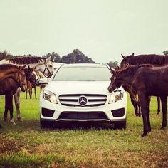 Horses Recognize Horsepower Mbphotocredit Flareaffair Mercedes Benz Gla250 Suv Horse Instacar Cars New Mercedes Amg Mercedes Benz Mercedes Benz Gla
