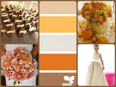 Fall 2015 Wedding Color Palettes - We both like the darker orange but think something is missing - Dan: need darker color than the orange, perhaps a dark brown - Nicole: I think the other orange is good, but could be a bit more yellow