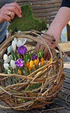 Mit einem Kranz aus Zweigen und Blüten heißen wir den Frühling willkommen. Hier zeigen wir Ihnen Schritt für Schritt, wie Sie ihn aus Naturmaterialien selbst herstellen.