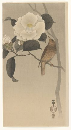 'Songbird and Camellia' (1900′s). Woodblock print by Ohara Koson (1877 - 1945). Published by Kokkeido (Akiyama Buemon).Image and text courtesy Freer Gallery of Art and Arthur M. Sackler Gallery. Robert O. Muller Collection