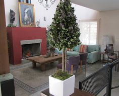 ARBOL DE BUXUS Medida: 60cm de alto x 22cm copa Material: Base de Cerámica Esmaltada Buxus, Base, Home Decor, Enamels, Breakfast Nook, Dried Flower Arrangements, Interiors, Decoration Home, Room Decor