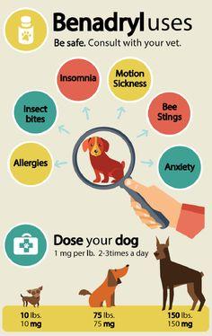 Benadryl-dosage-for-dogs