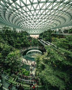 Talk about taking plants to another level. 🤯 The Changi Airport, which has over plants, is making us want to miss our flight home. Singapore Changi Airport, Singapore Travel, Singapore Garden, Visit Singapore, Architecture Photo, Landscape Architecture, Biophilic Architecture, Building Architecture, Landscape Design