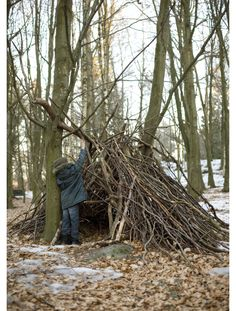 fort in the woods.... because Isaiah told me he wants to build a wigwam one day just like Philip and Ruths... and for me to read aloud Tanglewood Secret in it.    I'd love to, darling!