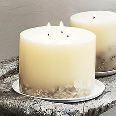 Seychelles Large Botanical Candle from The White Company