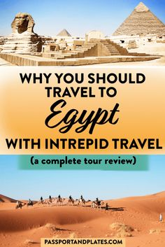 Wondering what it's like to travel to Egypt on a small group tour? Click to read the complete review of what it's like to do Intrepid's Egypt Adventure tour - and why you should book it now!