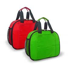 Image result for insulated cooler bags