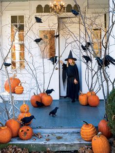 Halloween porch decorations. Really love the branches, birds and pumpkins
