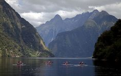Halls Arm, Doubtful Sound