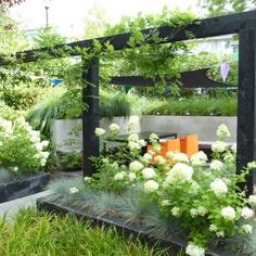 Home - Marc de Graaf Tuinen Pergola Garden, Terrace Garden, Garden Spaces, Garden Landscaping, Back Gardens, Small Gardens, Outdoor Gardens, Modern Garden Design, Landscape Design