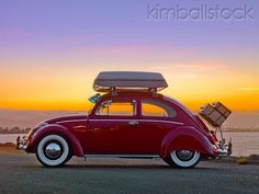 luggage rack for vw beetle | 1964 Volkwagen Beetle Red With Topper Tent and luggage rack