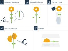 Don't want to waste your beautiful flower delivery by tossing them after they're wilted? Learn how to press flowers! Here are 4 ways to press flowers. Creative Crafts, Fun Crafts, Home Crafts, Crafts For Kids, Garden Crafts, Plant Press, Craft Projects, Projects To Try, Craft Ideas