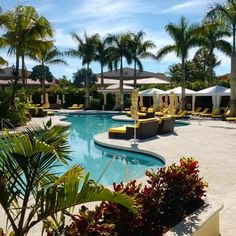 Relax your cares away at the Royal Palm Pool.