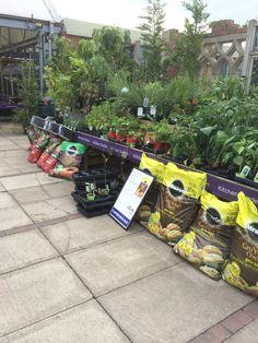 Wheatcroft Garden Centre - Notcutts - Edwalton - Nottingham - Lifestyle - Outdoor - Garden - Home - Layout - Landscpae - Visual Merchandising - www.clearretailgroup.eu