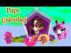 Create A Monster High Insect Bee Girl Doll Add On Starter Pack CAM Playset Set - YouTube