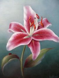 Acrylic E-Painting Pattern - Lady Stargazer Flower Painting - by Sue Pruett, MDA Learn To Paint, Flower Painting, Fabric Painting, Painting Patterns, Stargazing, Acrylic Painting Flowers, Lily Painting, Art, Bottle Painting