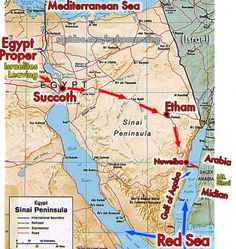 Map showing the route of the Exodus. So where did they go once they crossed the red sea?be sure to see the photos I have on this Board (Crossing the Red Sea). Israel History, Jewish History, Ancient History, Crossing The Red Sea, Bible Mapping, Religion, Mystery Of History, Bible Lessons, Jeddah