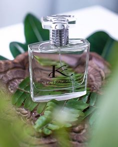 A wise man knows cologne is the most powerful weapon in the fight for female attention. Marcello Mastroianni, Cologne, Perfume Bottles, Fragrances, Weapon, Bespoke, Quote, Beauty, Female