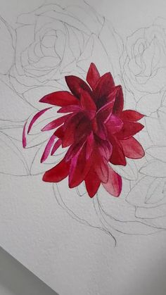 This blogpost shares a sneak peak into my design process as I created some highly detailed, custom designed watercolour flower paintings for a red, colourful wedding stationery suite. This deep and vibrant red floral watercolour illustration is perfect for a floral or botanical outdoor wedding in the country, a private English estate wedding or a wedding in Mexico. Watercolor Flowers Tutorial, Watercolour Tutorials, Floral Watercolor, Flower Painting Canvas, Flower Paintings, Watercolor Paintings, Dahlia Flower, Flower Art, Illustrated Wedding Invitations