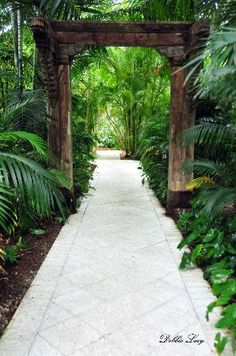 Parrot Key Hotel and Resort:                   A WALK INTO PARADISE