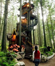 Unique Homes - Another upgrade to tree houses – this unique home is literally built around nature.