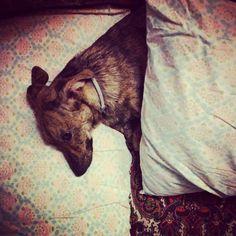 Dormo al tuo posto!!!