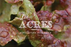 Los Acres - Silvia Gil-Roldán