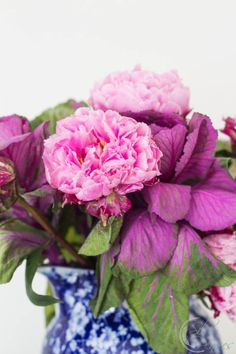 Tips for opening peonies and more tips I learned from Matthew Mead.