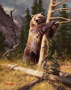 (disambiguation) An artist is a person engaged in creating art or practicing the arts. Artist or artists or The Artist or Artiste may also refer to: Bear Paintings, Wildlife Paintings, Wildlife Art, Wild Life, Landscape Photos, Landscape Art, Bear Drawing, Drawing Art, Hunting Art