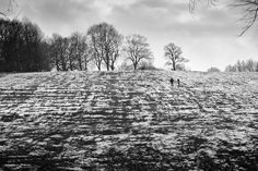 Meersbrook Park, Sheffield, UK Copyright: Jawad Meersbrook Park #socialsheffield #sheffield