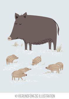 Tiere des Waldes: das Wildschwein. Februarmotiv für den neuen Kalender 2015