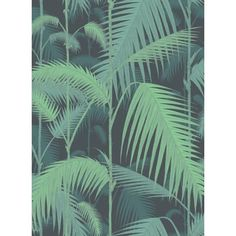 Tapete Palm Jungle / Palm Von Cole U0026 Son   Meine Wand Tapeten Floral,  Moderne