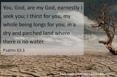 Verse of the Day: Psalms 63:1 You, God, are my God, earnestly I seek you; I thirst for you, my whole being longs for you, in a dry and parched land where there is no water.  If you want to h…