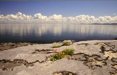Wild Atlantic Way – The Burren And Connemara - A Culinary & Cultural Journey Connemara, Ireland Vacation, Ireland Travel, Best Of Ireland, Ireland Pictures, Wild Atlantic Way, Highlights, Irish Landscape, County Clare