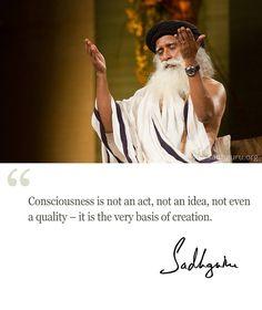 Consciousness ... is the very basis of creation. ~Sadhguru
