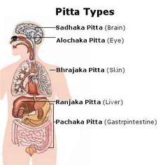 Ayurvedic pitta types
