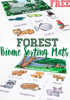 Compare types of forests and the animals that live there with these free printable Forest Biome sorting mats. As your kids learn the different between deciduous forests and rainforests, these sorting mats will be a fun way to learn about the animals that Science Activities For Kids, Animal Activities, Preschool Science, Animal Science, Steam Activities, Nature Activities, Learning Activities, Rainforest Theme, Rainforest Animals